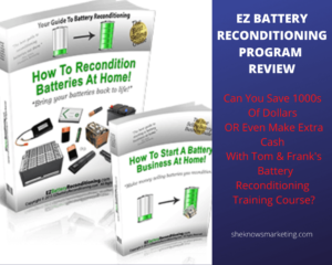 EZ Battery Reconditioning Program Review